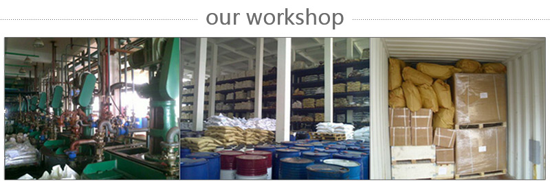 HUPC WORKSHOP